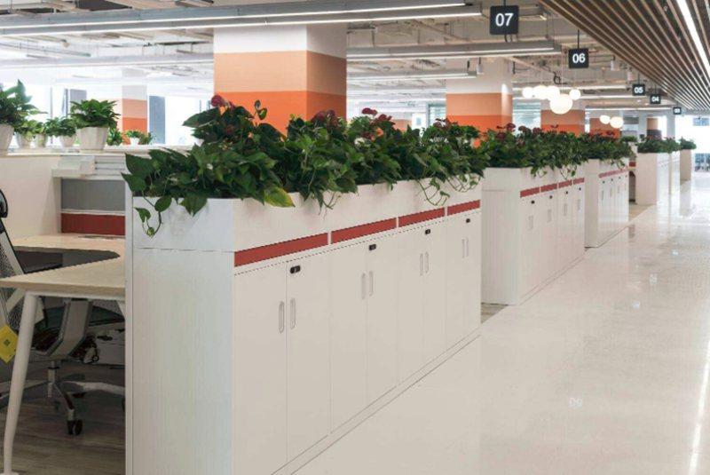 办公室设计中绿化设计的注意事项